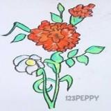 рождественскую розу