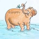 слона в воде