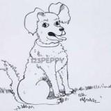 сидящую собаку