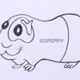 морскую свинку