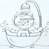моющегося кота