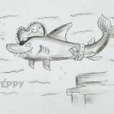 акулу пирата