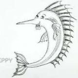 рыбку-парусник