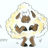 дрожащую овцу