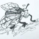 забавную муху