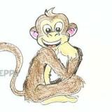 забавную обезьянку