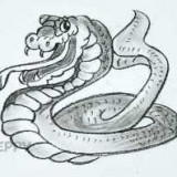 змею кобру