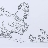 курицу с цыплятами