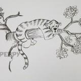 тигра на дереве