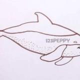 симпатичного дельфина