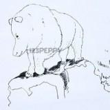полярного медведя